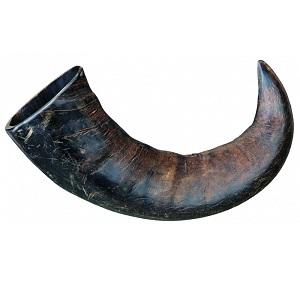 buffelhoorn punt