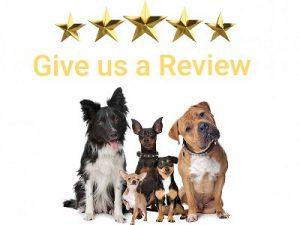review hondensnacks.shop